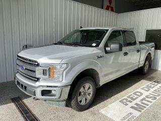 Used 2019 Ford F-150 XL for sale in Red Deer, AB