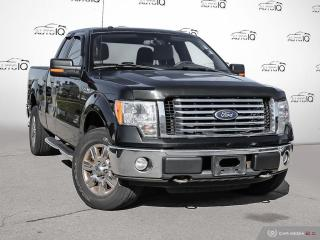 Used 2010 Ford F-150 XLT for sale in Oakville, ON