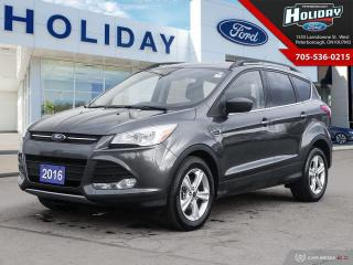 Used 2016 Ford Escape SE for sale in Peterborough, ON