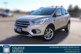 Used 2017 Ford Escape SE for sale in Tillsonburg, ON