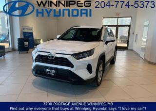 Used 2019 Toyota RAV4 LE for sale in Winnipeg, MB