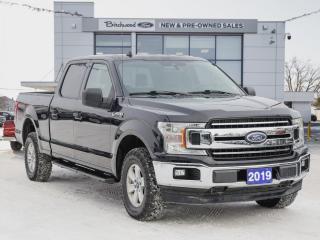 Used 2019 Ford F-150 XLT CLEAN CARFAX | 1 OWNER | TOW PKG for sale in Winnipeg, MB