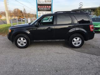 Used 2011 Ford Escape XLT for sale in Newmarket, ON