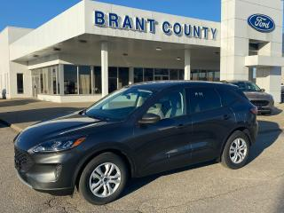 New 2020 Ford Escape S for sale in Brantford, ON