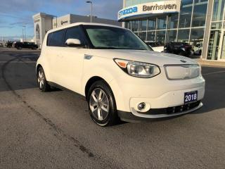 Used 2018 Kia Soul EV Ev Luxury for sale in Ottawa, ON
