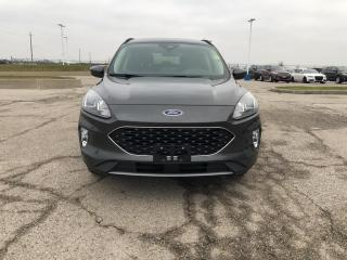 New 2020 Ford Escape SEL for sale in Leamington, ON