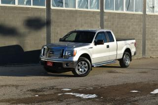 Used 2010 Ford F-150 XLT for sale in Winnipeg, MB