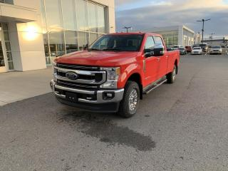 Used 2020 Ford F-250 XLT Haut Niveau cabine 6 places 4RM cais for sale in Victoriaville, QC
