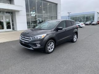 Used 2019 Ford Escape SE 4RM for sale in Victoriaville, QC