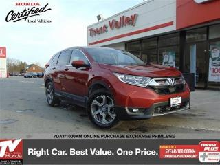 Used 2019 Honda CR-V EX-L (1) Owner, Extended Warranty, Winter Tires on Rims for sale in Peterborough, ON