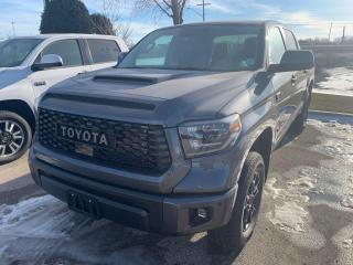 New 2021 Toyota Tundra 4X4 CrewMax SR5 for sale in Portage la Prairie, MB