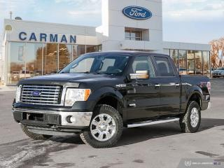 Used 2012 Ford F-150 XLT for sale in Carman, MB