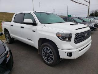 Used 2019 Toyota Tundra SR5 Plus for sale in Fredericton, NB