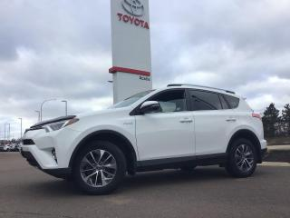 Used 2017 Toyota RAV4 Hybrid LE+ for sale in Moncton, NB