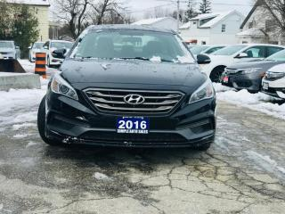 Used 2016 Hyundai Sonata 4dr Sdn 2.4L Auto Sport Tech for sale in Barrie, ON
