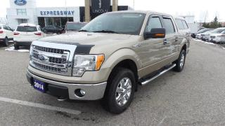 Used 2014 Ford F-150 XLT for sale in New Hamburg, ON