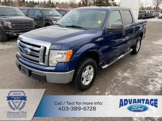 Used 2010 Ford F-150 for sale in Calgary, AB