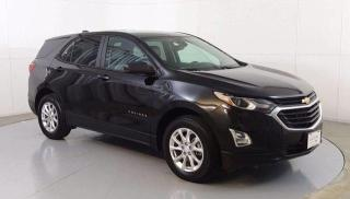 Used 2020 Chevrolet Equinox LS for sale in Winnipeg, MB