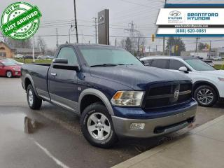 Used 2012 RAM 1500 SLT  - $205 B/W for sale in Brantford, ON