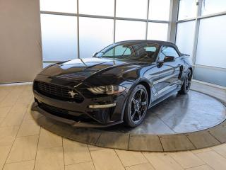Used 2019 Ford Mustang GT Premium for sale in Edmonton, AB