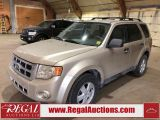 Photo of Gold 2010 Ford Escape
