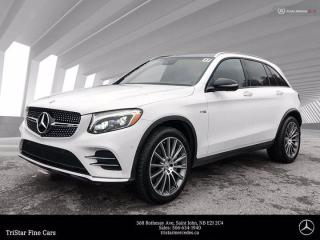 Used 2017 Mercedes-Benz GL-Class AMG GLC 43 for sale in Saint John, NB