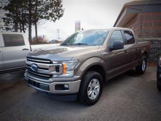 Used 2019 Ford F-150 XLT for sale in Saint John, NB
