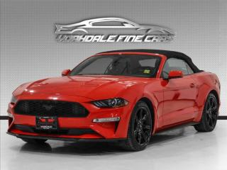 Used 2019 Ford Mustang EcoBoost Convertible, Navigation, Leather, Loaded! for sale in Concord, ON