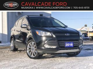 Used 2016 Ford Escape SE for sale in Bracebridge, ON