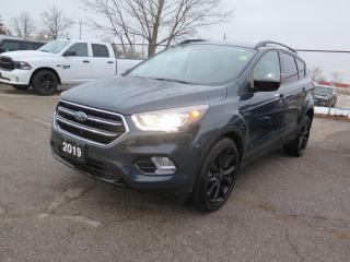 Used 2019 Ford Escape SE 1 owner local trade for sale in St. Thomas, ON