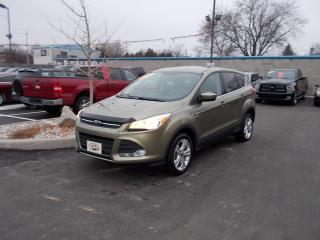 Used 2013 Ford Escape SE for sale in Windsor, ON