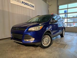 Used 2016 Ford Escape 4 portes SE, Traction intégrale for sale in St-Hyacinthe, QC