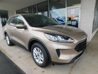 New 2020 Ford Escape SE for sale in Mount Brydges, ON