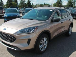 New 2020 Ford Escape S 100A | AWD | 1.5L Ecoboost | Auto Start/Stop | Reverse Camera System for sale in Edmonton, AB