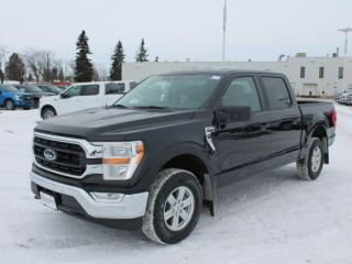 New 2021 Ford F-150 XLT | 4x4 | 3.3L | Rear View Camera | Sync 4 | apple car Play for sale in Edmonton, AB