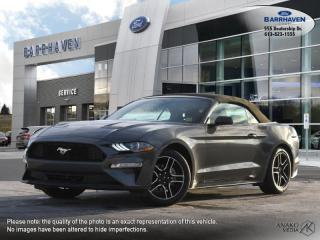 Used 2020 Ford Mustang EcoBoost for sale in Ottawa, ON