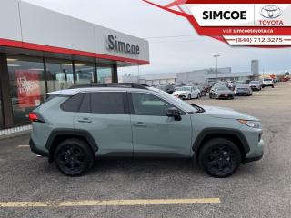 Used 2020 Toyota RAV4 TRD Off-Road  - Leather Seats - $288 B/W for sale in Simcoe, ON