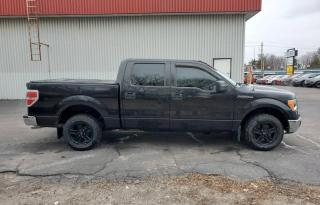 Used 2010 Ford F-150 XLT for sale in Oshawa, ON