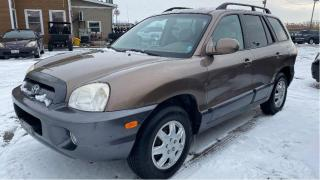 Used 2006 Hyundai Santa Fe GL for sale in Tilbury, ON