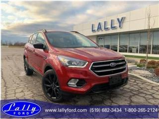 Used 2017 Ford Escape SE, Sport Pack, Nav, Ask how to get 1.9%!! for sale in Tilbury, ON
