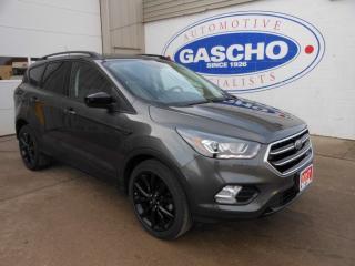 Used 2017 Ford Escape SE FWD Navigation for sale in Kitchener, ON