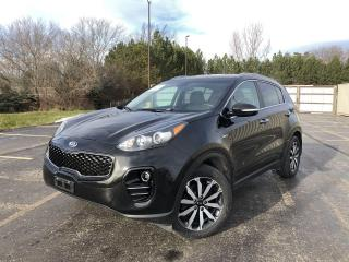 Used 2019 Kia Sportage EX AWD for sale in Cayuga, ON