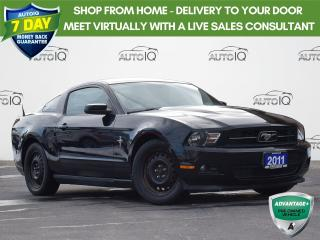 Used 2011 Ford Mustang LOW KM'S | ONE OWNER | MANUAL  |  V6 for sale in Waterloo, ON