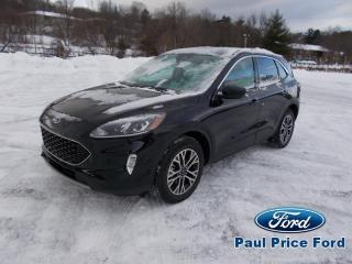 New 2020 Ford Escape SEL AWD for sale in Bancroft, ON