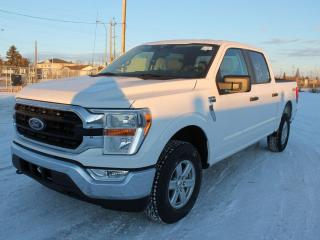 New 2021 Ford F-150 XLT | 300a | 4x4 | Trailer Hitch | Rear Camera for sale in Edmonton, AB