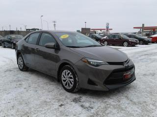 Used 2019 Toyota Corolla LE for sale in Oak Bluff, MB