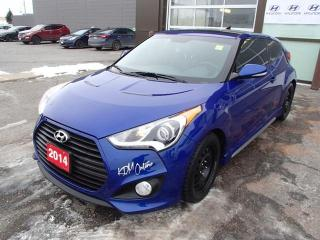 Used 2014 Hyundai Veloster TURBO TECH for sale in Nepean, ON
