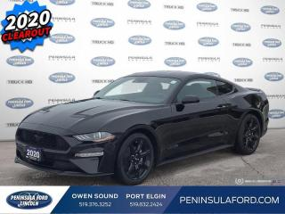 New 2020 Ford Mustang - $235 B/W for sale in Port Elgin, ON