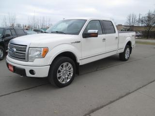 Used 2009 Ford F-150 PLATINUM for sale in Hamilton, ON