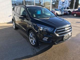 Used 2017 Ford Escape Titanium for sale in St. Jacobs, ON